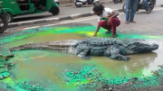 Potholes… What a Croc!