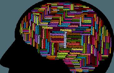A Neuroscience Professor's Brain Power Short Course